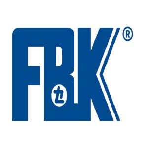 FBK – Brake pads